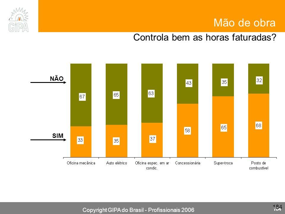 Copyright GIPA do Brasil - Profissionais 2006 184 Mão de obra Controla bem as horas faturadas? NÃO SIM