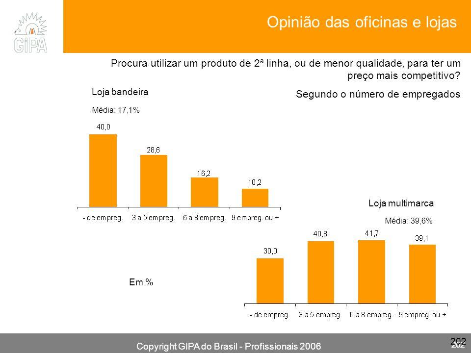 Copyright GIPA do Brasil - Profissionais 2006 202 Loja multimarca Média: 39,6% Segundo o número de empregados Loja bandeira Média: 17,1% Em % Procura utilizar um produto de 2ª linha, ou de menor qualidade, para ter um preço mais competitivo.