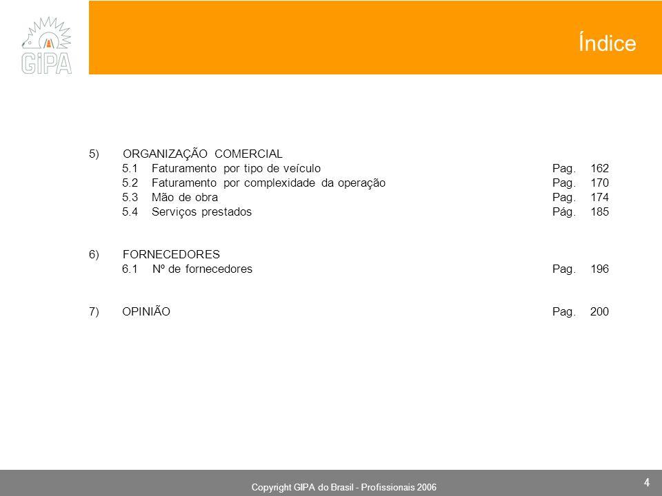 Monografia 2006 Copyright GIPA do Brasil - Profissionais 2006 4 Índice 5) ORGANIZAÇÃO COMERCIAL 5.1 Faturamento por tipo de veículo Pag. 162 5.2 Fatur