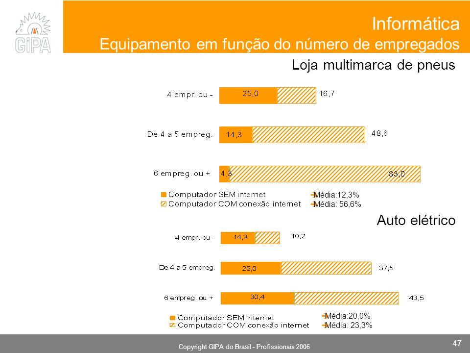 Monografia 2006 Copyright GIPA do Brasil - Profissionais 2006 47 Informática Equipamento em função do número de empregados Loja multimarca de pneus Auto elétrico Média:20,0% Média: 23,3% Média:12,3% Média: 56,6%