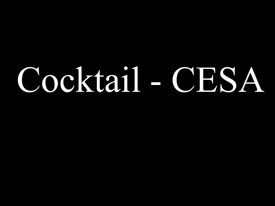 Cocktail - CESA