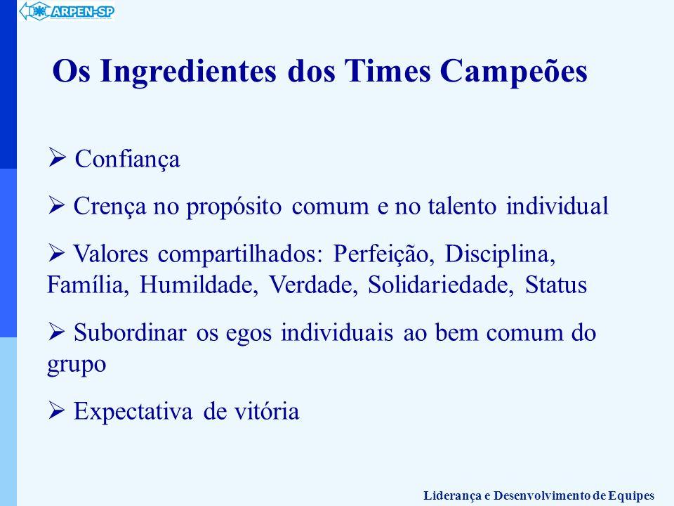Os Ingredientes dos Times Campeões Confiança Crença no propósito comum e no talento individual Valores compartilhados: Perfeição, Disciplina, Família,