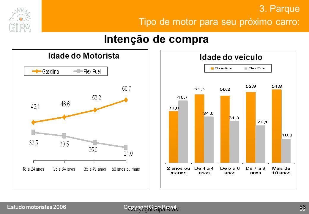 Etude conducteur 2005Copyright Gipa Brasil 56 Base : 3790 Estudo motoristas 2006Copyright Gipa Brasil 56 Copyright Gipa Brasil 56 3. Parque Tipo de mo