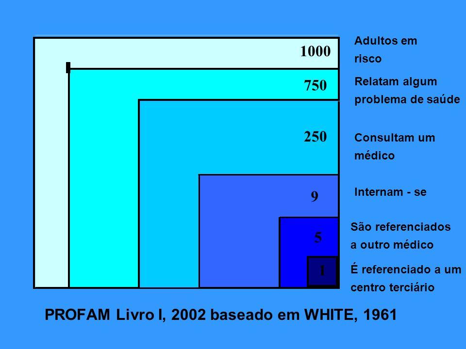 Adultos em risco Relatam algum problema de saúde 1 Consultam um médico Internam - se São referenciados a outro médico É referenciado a um centro terci