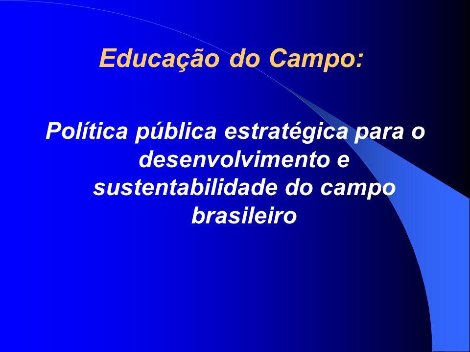 Educação do Campo: Política pública estratégica para o desenvolvimento e sustentabilidade do campo brasileiro