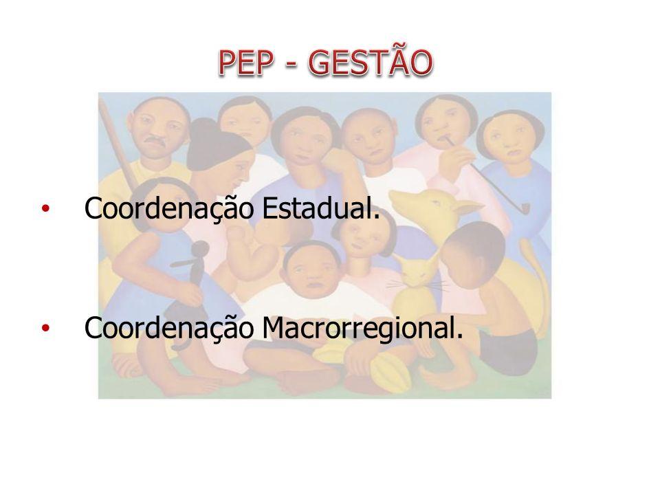 Coordenação Estadual. Coordenação Macrorregional.