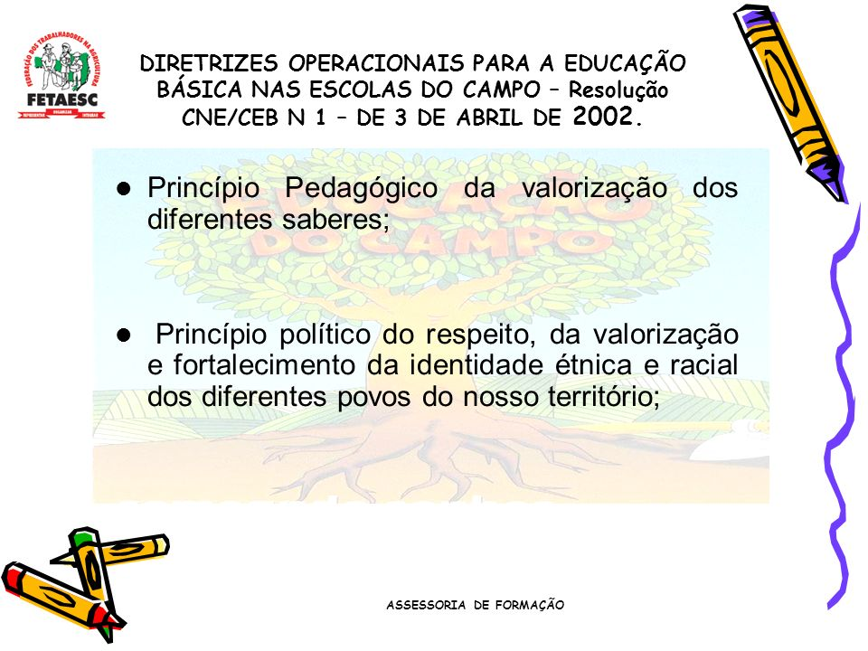 ASSESSORIA DE FORMAÇÃO Princípio Pedagógico da valorização dos diferentes saberes; Princípio político do respeito, da valorização e fortalecimento da identidade étnica e racial dos diferentes povos do nosso território; DIRETRIZES OPERACIONAIS PARA A EDUCAÇÃO BÁSICA NAS ESCOLAS DO CAMPO – Resolução CNE/CEB N 1 – DE 3 DE ABRIL DE 2002.