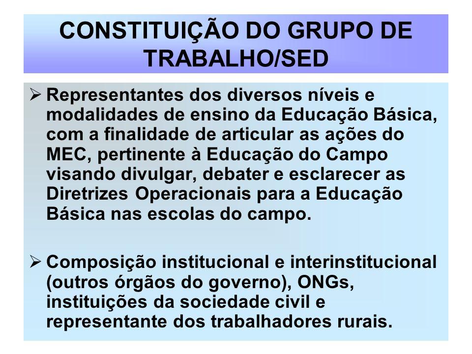 CONSTITUIÇÃO DO GRUPO DE TRABALHO/SED Representantes dos diversos níveis e modalidades de ensino da Educação Básica, com a finalidade de articular as