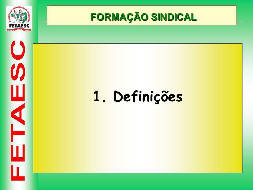 FORMAÇÃO SINDICAL FORMAÇÃO SINDICAL 1. Definições