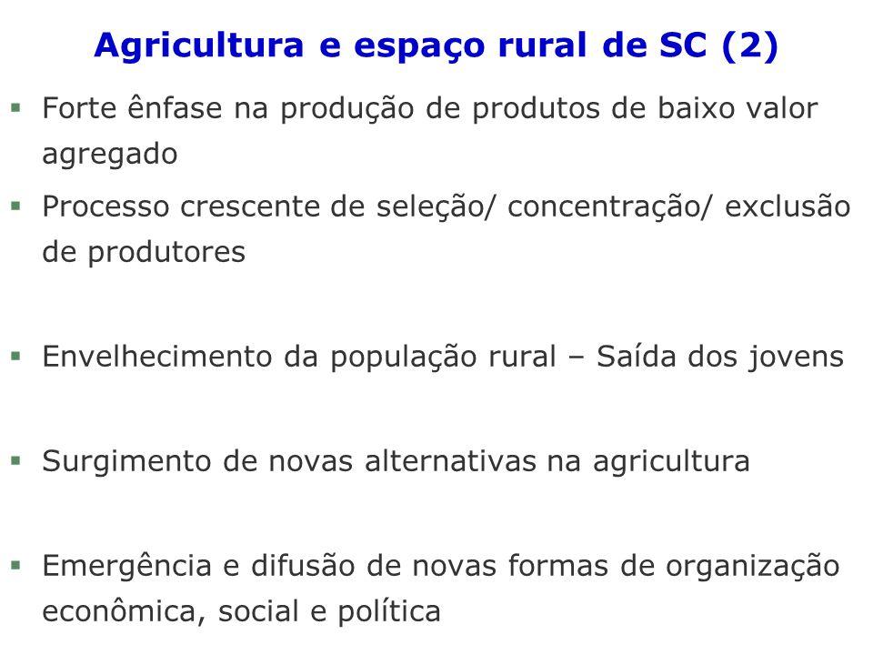 Agricultura e espaço rural de SC (2) §Forte ênfase na produção de produtos de baixo valor agregado §Processo crescente de seleção/ concentração/ exclu