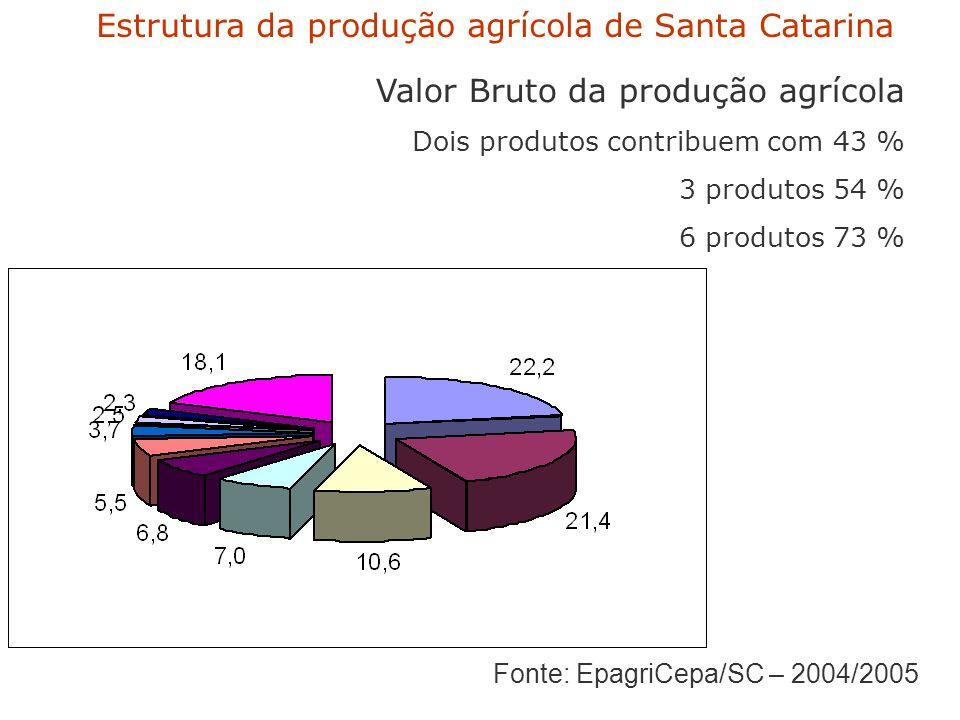 Estrutura da produção agrícola de Santa Catarina Valor Bruto da produção agrícola Dois produtos contribuem com 43 % 3 produtos 54 % 6 produtos 73 % Fonte: EpagriCepa/SC – 2004/2005