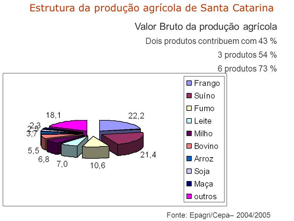 Fonte: Epagri/Cepa– 2004/2005 Estrutura da produção agrícola de Santa Catarina Valor Bruto da produção agrícola Dois produtos contribuem com 43 % 3 produtos 54 % 6 produtos 73 %