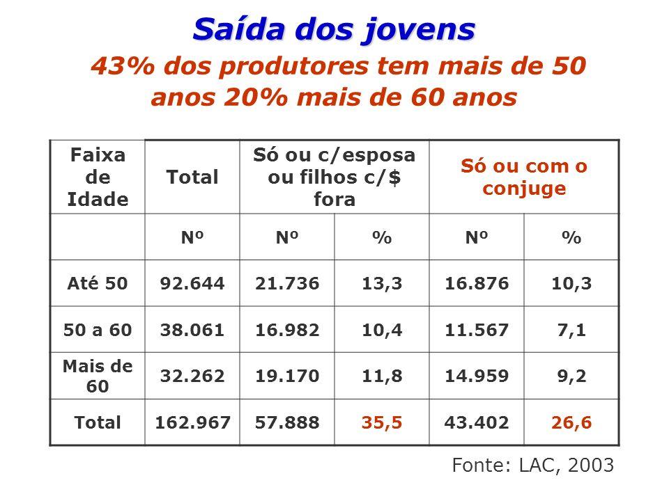 Saída dos jovens Saída dos jovens 43% dos produtores tem mais de 50 anos 20% mais de 60 anos Faixa de Idade Total Só ou c/esposa ou filhos c/$ fora Só