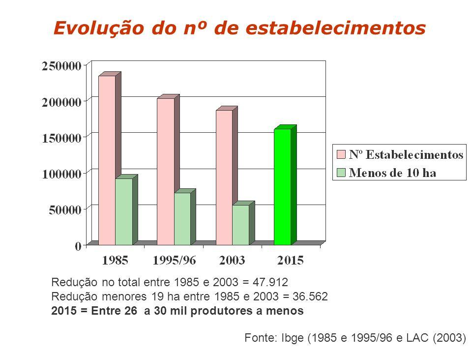 Evolução do nº de estabelecimentos Redução no total entre 1985 e 2003 = 47.912 Redução menores 19 ha entre 1985 e 2003 = 36.562 2015 = Entre 26 a 30 mil produtores a menos Fonte: Ibge (1985 e 1995/96 e LAC (2003)