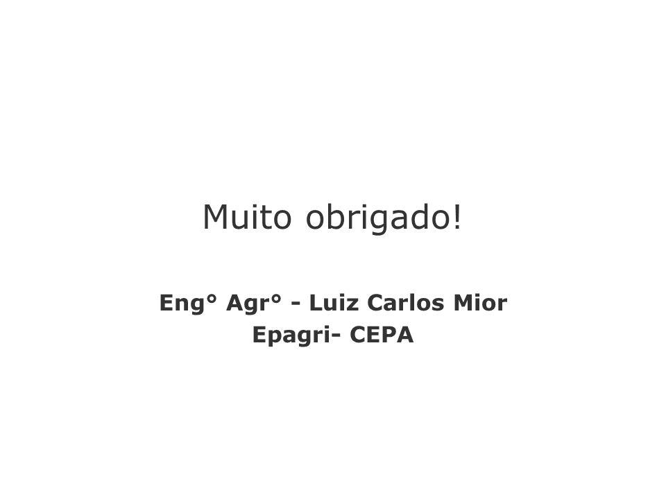 Muito obrigado! Eng° Agr° - Luiz Carlos Mior Epagri- CEPA