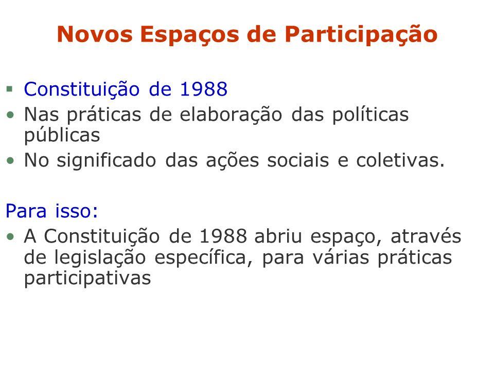 Novos Espaços de Participação §Constituição de 1988 Nas práticas de elaboração das políticas públicas No significado das ações sociais e coletivas. Pa