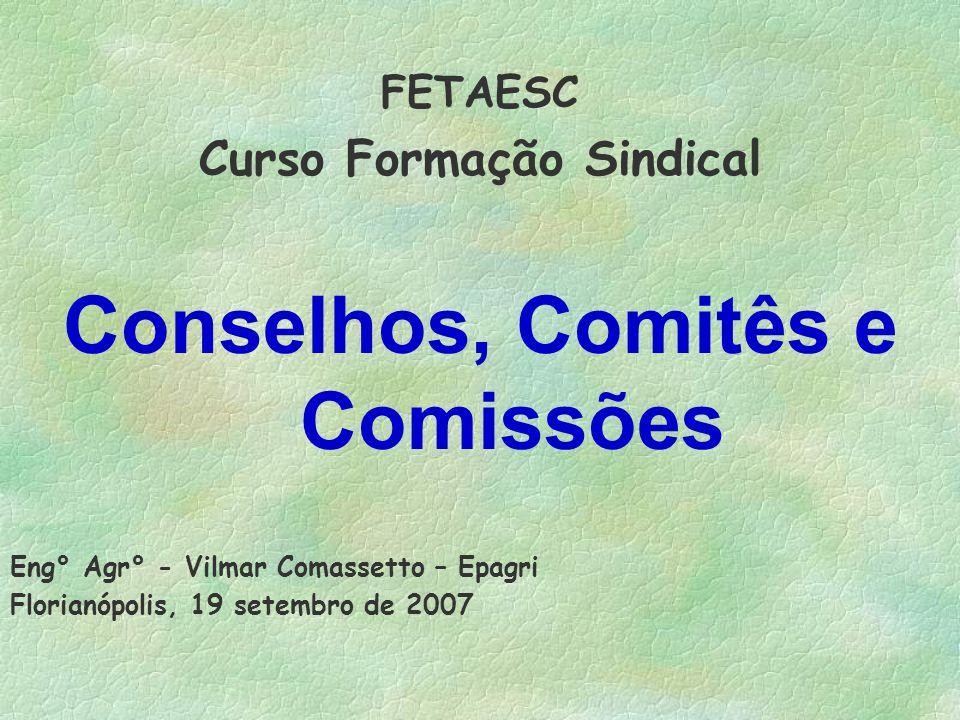 FETAESC Curso Formação Sindical Conselhos, Comitês e Comissões Eng° Agr° - Vilmar Comassetto – Epagri Florianópolis, 19 setembro de 2007