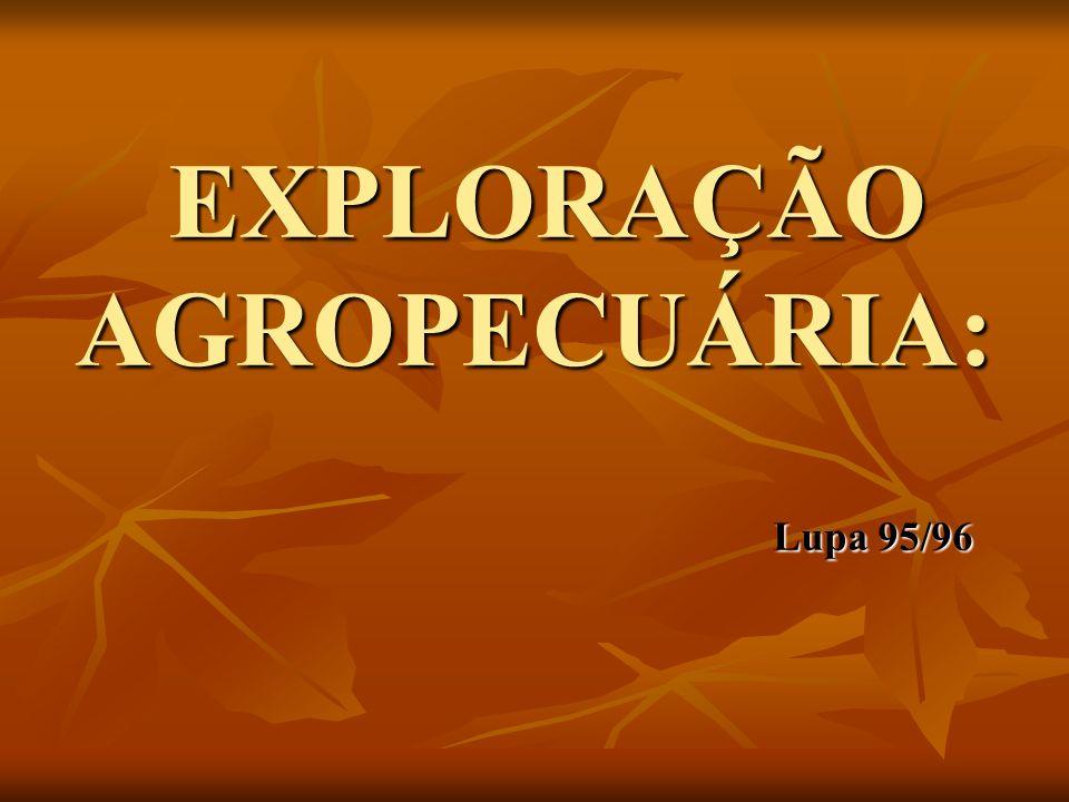 EXPLORAÇÃO AGROPECUÁRIA: Lupa 95/96 EXPLORAÇÃO AGROPECUÁRIA: Lupa 95/96