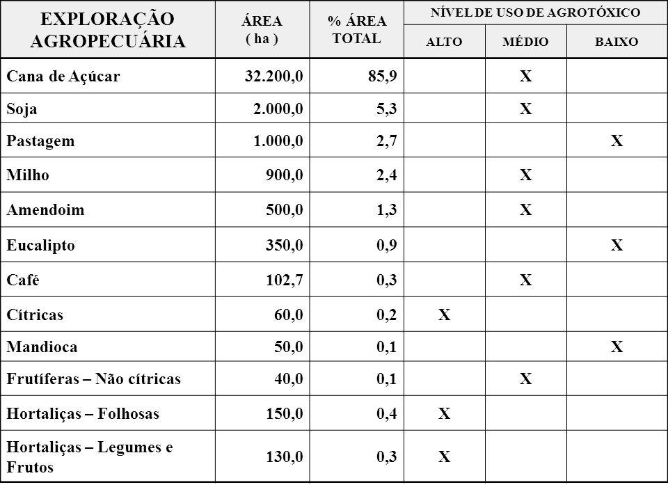 EXPLORAÇÃO AGROPECUÁRIA ÁREA ( ha ) % ÁREA TOTAL NÍVEL DE USO DE AGROTÓXICO ALTOMÉDIOBAIXO Cana de Açúcar32.200,085,9X Soja2.000,05,3X Pastagem1.000,0