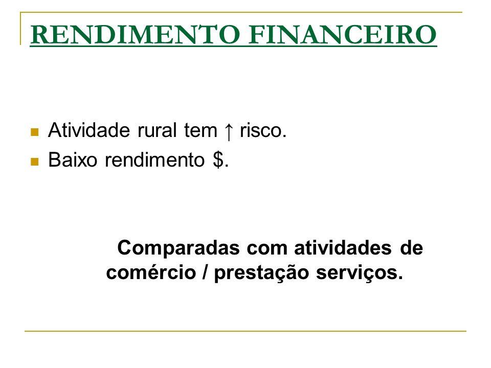 RENDIMENTO FINANCEIRO Atividade rural tem risco. Baixo rendimento $. Comparadas com atividades de comércio / prestação serviços.