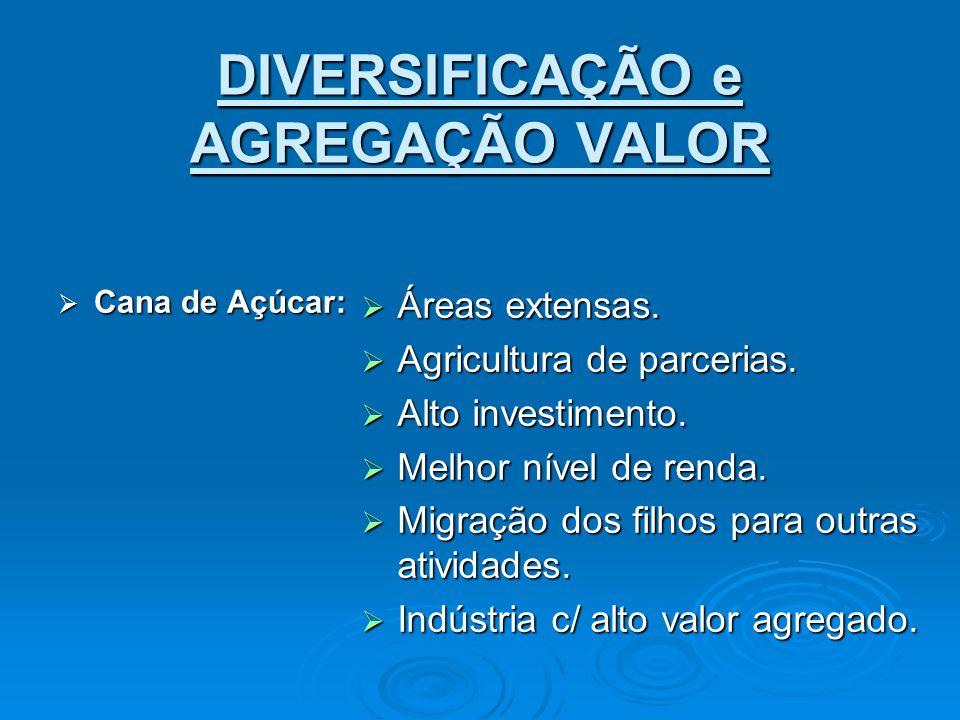 DIVERSIFICAÇÃO e AGREGAÇÃO VALOR Cana de Açúcar: Cana de Açúcar: Áreas extensas. Áreas extensas. Agricultura de parcerias. Agricultura de parcerias. A