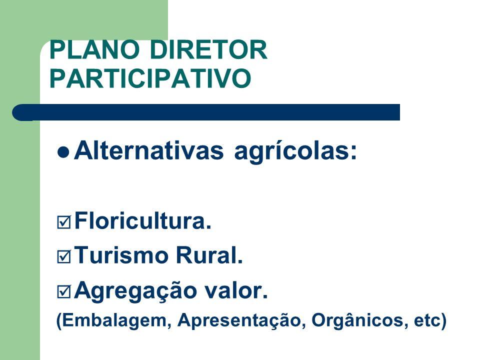 PLANO DIRETOR PARTICIPATIVO Alternativas agrícolas: Floricultura. Turismo Rural. Agregação valor. (Embalagem, Apresentação, Orgânicos, etc)