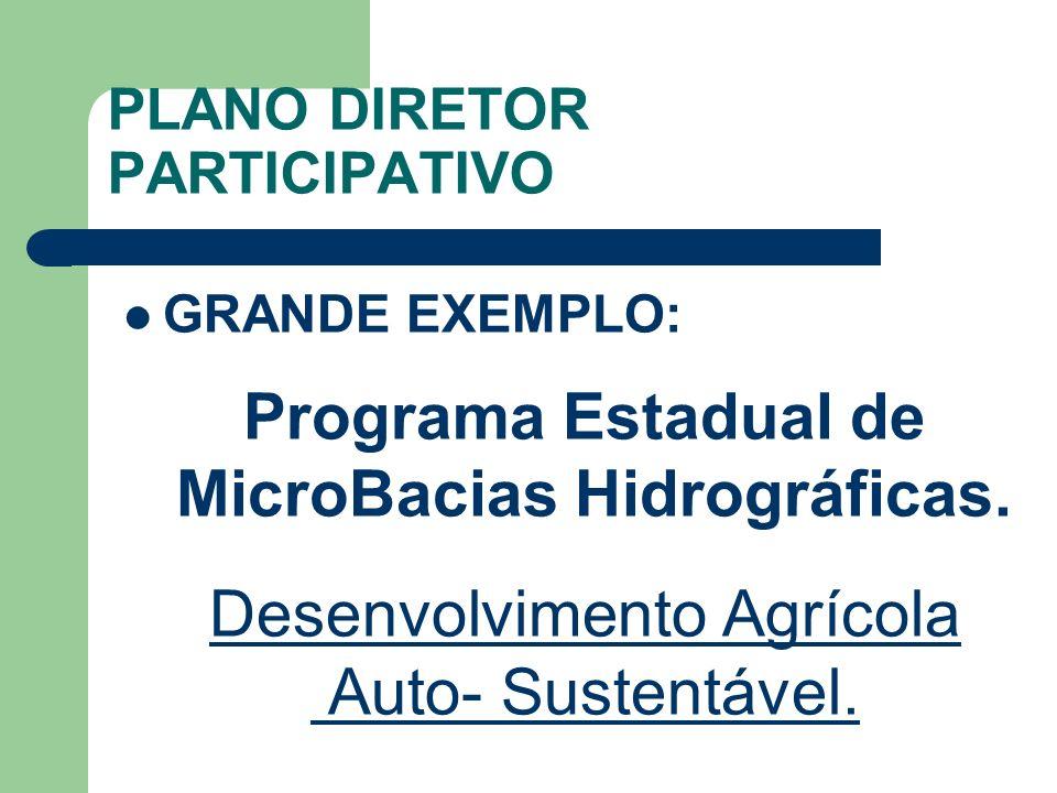 PLANO DIRETOR PARTICIPATIVO GRANDE EXEMPLO: Programa Estadual de MicroBacias Hidrográficas. Desenvolvimento Agrícola Auto- Sustentável.