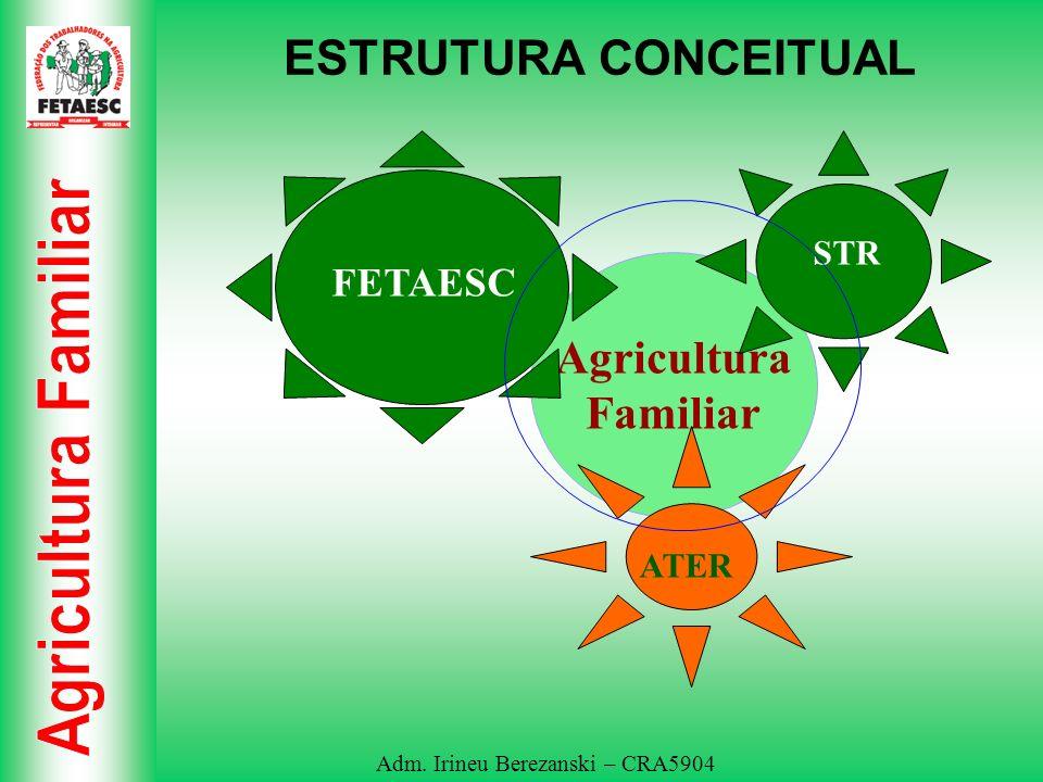 Adm. Irineu Berezanski – CRA5904 ESTRUTURA CONCEITUAL Agricultura Familiar FETAESC STR ATER