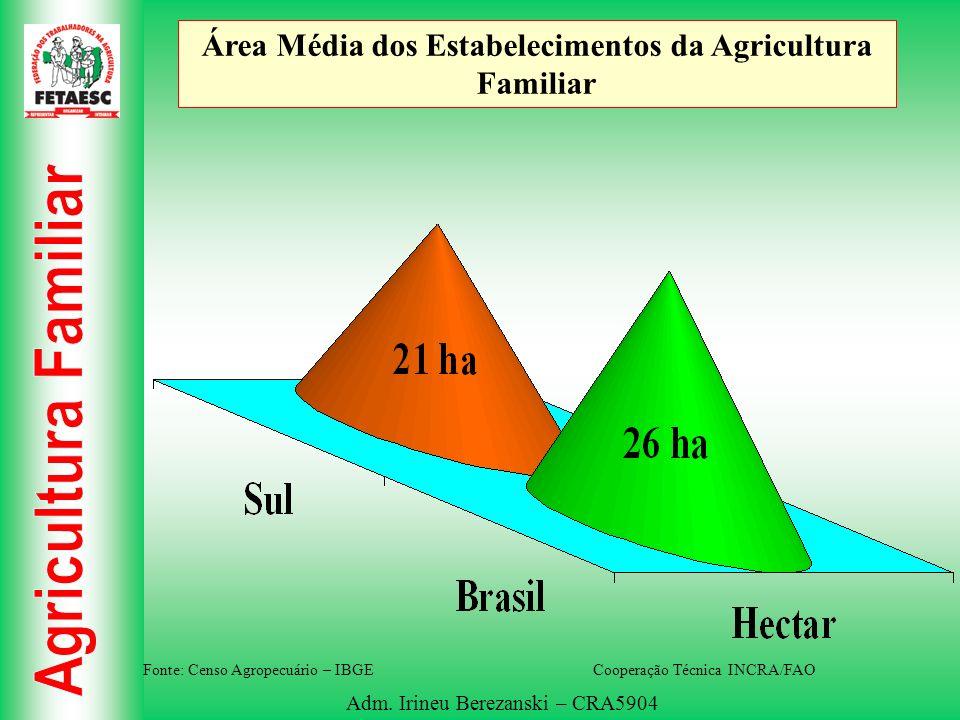 Adm. Irineu Berezanski – CRA5904 Área Média dos Estabelecimentos da Agricultura Familiar Fonte: Censo Agropecuário – IBGE Cooperação Técnica INCRA/FAO