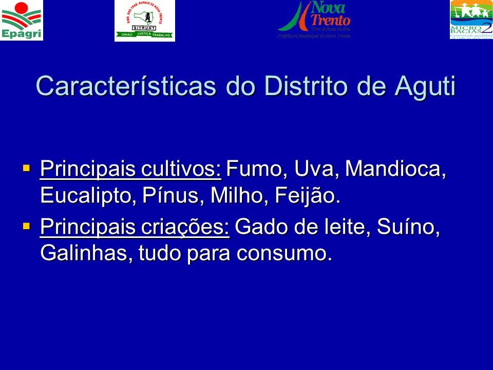 Características do Distrito de Aguti Principais cultivos: Fumo, Uva, Mandioca, Eucalipto, Pínus, Milho, Feijão. Principais cultivos: Fumo, Uva, Mandio