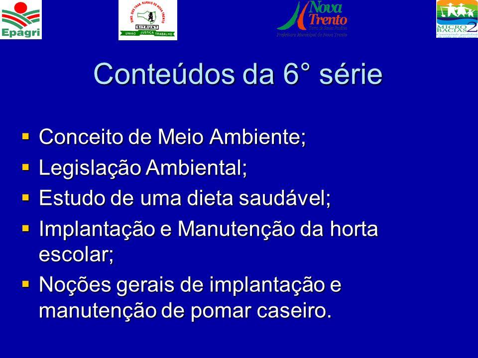 Conteúdos da 6° série Conceito de Meio Ambiente; Conceito de Meio Ambiente; Legislação Ambiental; Legislação Ambiental; Estudo de uma dieta saudável;