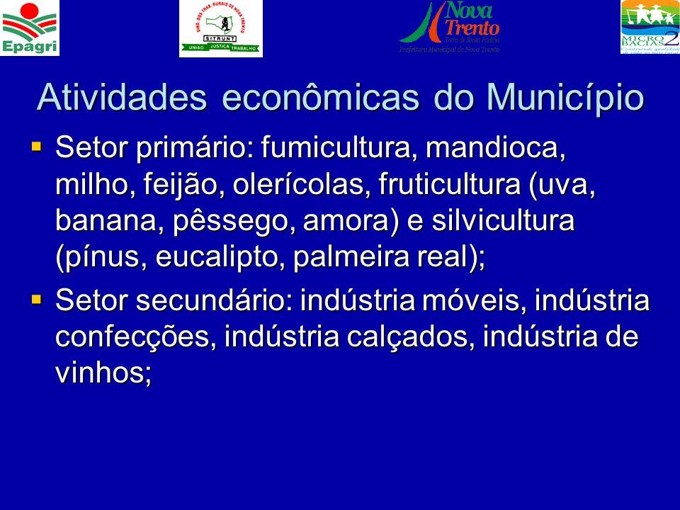 Atividades econômicas do Município Setor primário: fumicultura, mandioca, milho, feijão, olerícolas, fruticultura (uva, banana, pêssego, amora) e silv