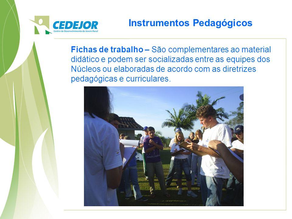 Instrumentos Pedagógicos Fichas de trabalho – São complementares ao material didático e podem ser socializadas entre as equipes dos Núcleos ou elabora