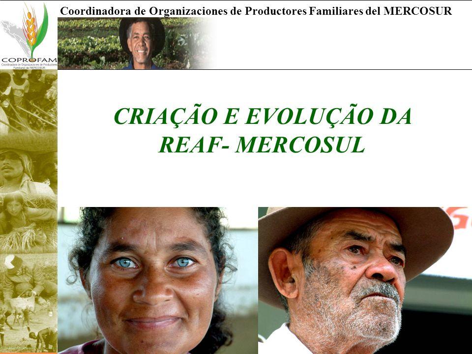 Coordinadora de Organizaciones de Productores Familiares del MERCOSUR CRIAÇÃO E EVOLUÇÃO DA REAF- MERCOSUL