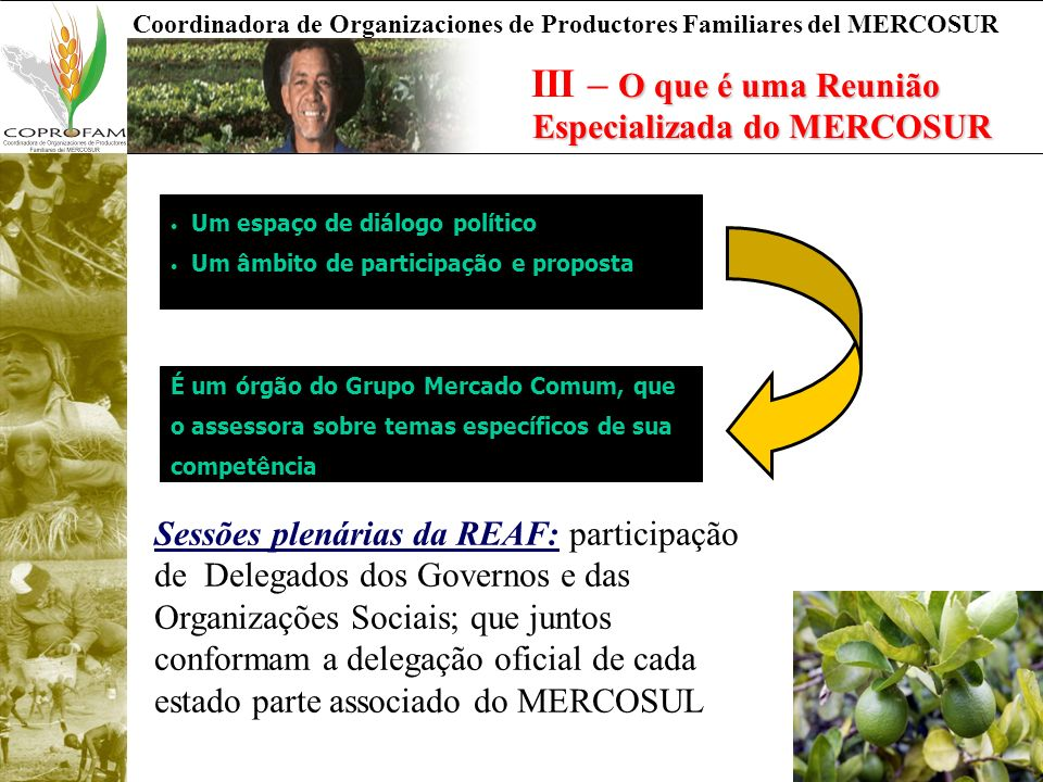 Coordinadora de Organizaciones de Productores Familiares del MERCOSUR O que é uma Reunião Especializada do MERCOSUR III – O que é uma Reunião Especial