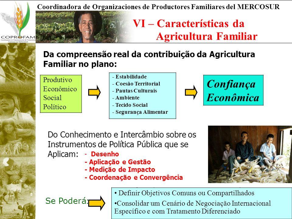 Coordinadora de Organizaciones de Productores Familiares del MERCOSUR VI – Características da Agricultura Familiar Da compreensão real da contribuição da Agricultura Familiar no plano: Produtivo Econômico Social Político - Estabilidade - Coesão Territorial - Pautas Culturais - Ambiente - Tecido Social - Segurança Alimentar Confiança Econômica Do Conhecimento e Intercâmbio sobre os Instrumentos de Política Pública que se Aplicam: - Desenho - Aplicação e Gestão - Medição de Impacto - Coordenação e Convergência Se Poderá : - Definir Objetivos Comunes o Compartidos - Consolidar un Escenario de Negociación Internacional Específico y con Tratamiento Diferenciado Definir Objetivos Comuns ou Compartilhados Consolidar um Cenário de Negociação Internacional Específico e com Tratamento Diferenciado