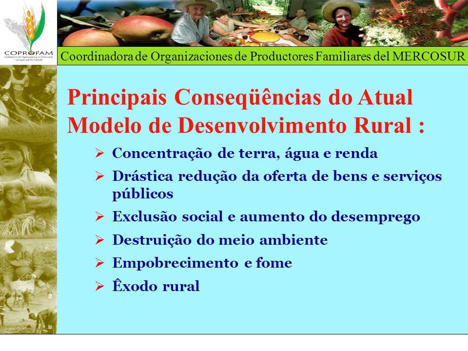 Coordinadora de Organizaciones de Productores Familiares del MERCOSUR Principais Conseqüências do Atual Modelo de Desenvolvimento Rural : Concentração