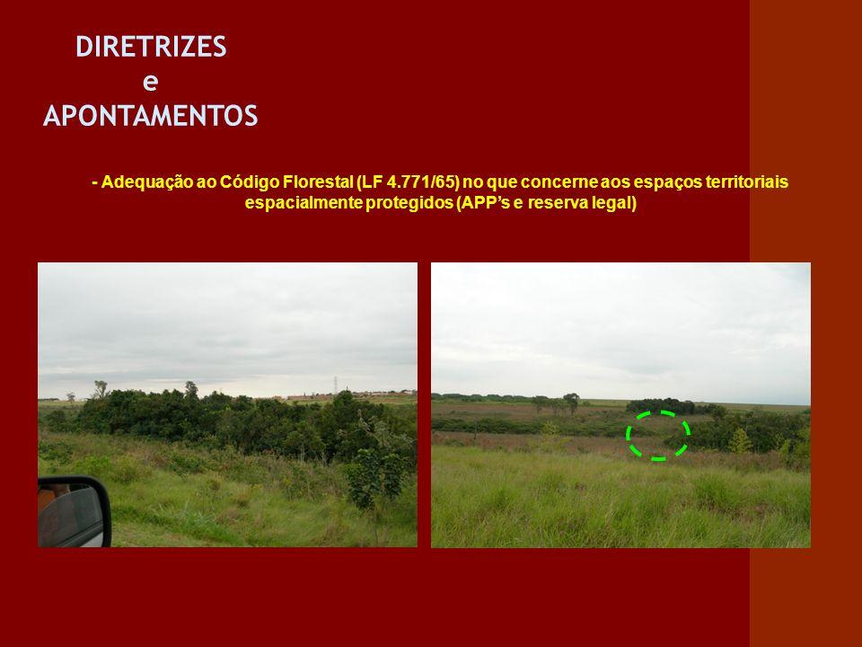 DIRETRIZES e APONTAMENTOS - Adequação ao Código Florestal (LF 4.771/65) no que concerne aos espaços territoriais espacialmente protegidos (APPs e rese