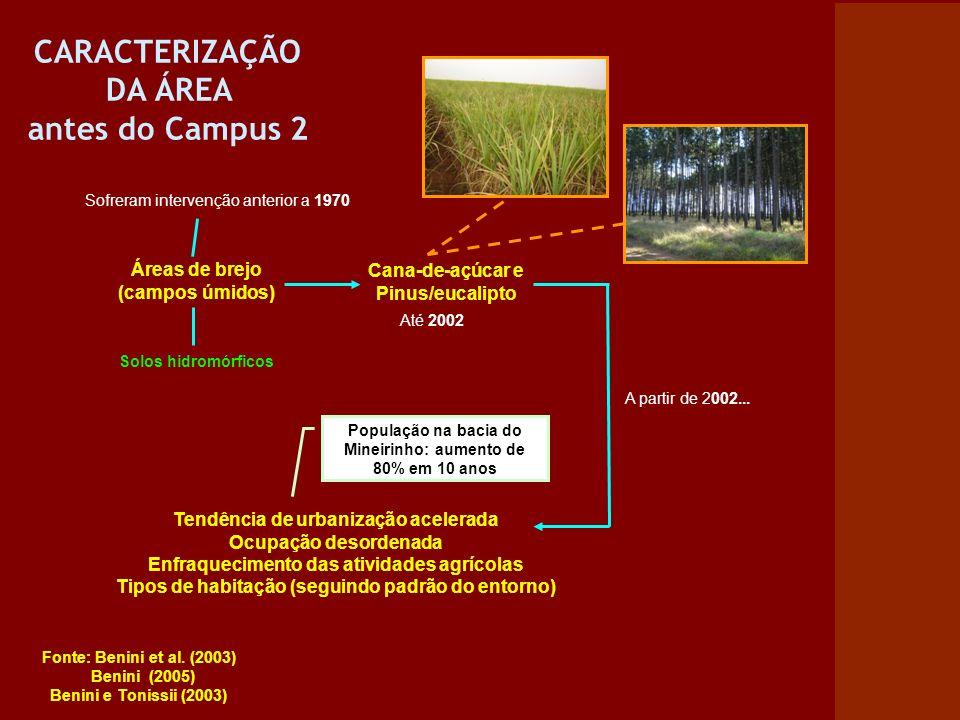 CARACTERIZAÇÃO DA ÁREA antes do Campus 2 Áreas de brejo (campos úmidos) Cana-de-açúcar e Pinus/eucalipto Tendência de urbanização acelerada Ocupação d