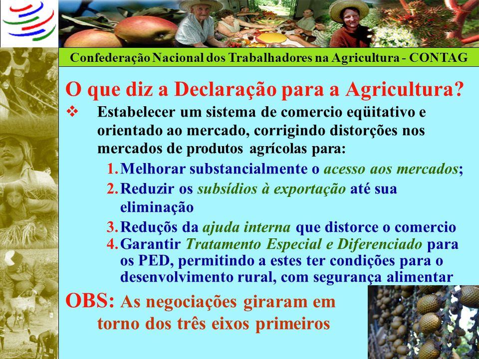 Confederação Nacional dos Trabalhadores na Agricultura - CONTAG O que diz a Declaração para a Agricultura? Estabelecer um sistema de comercio eqüitati
