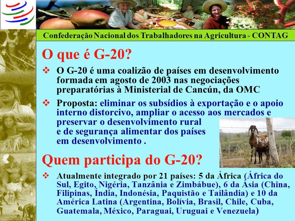 Confederação Nacional dos Trabalhadores na Agricultura - CONTAG O que é G-20? O G-20 é uma coalizão de países em desenvolvimento formada em agosto de