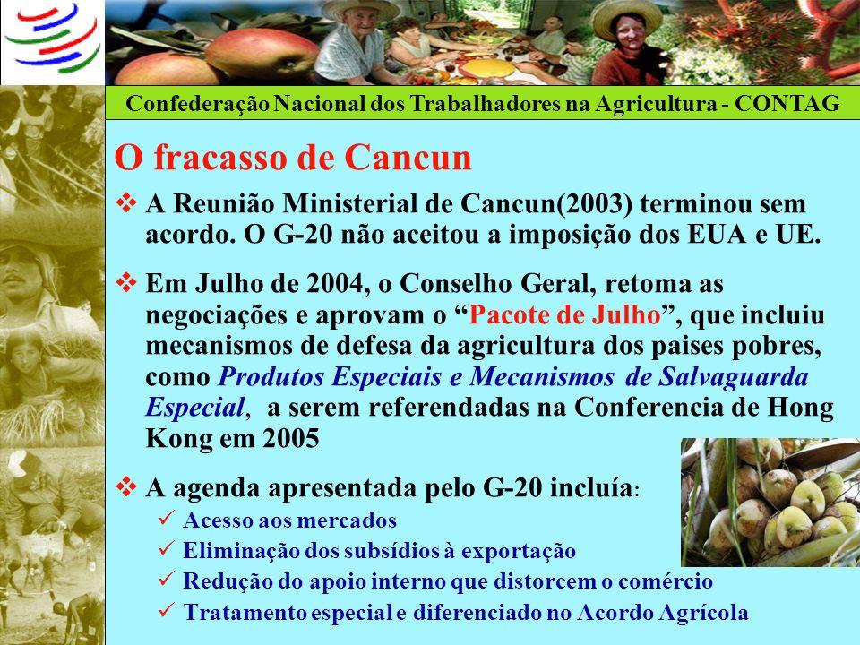Confederação Nacional dos Trabalhadores na Agricultura - CONTAG O Protocolo de Ouro Preto (FIRMADO EM 1994 O fracasso de Cancun A Reunião Ministerial