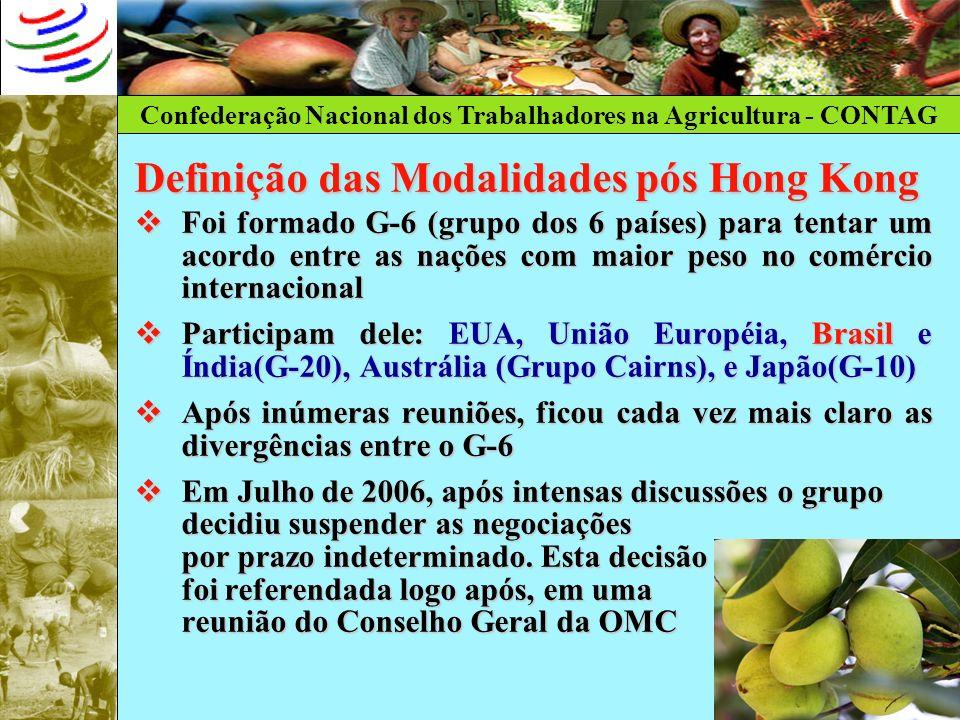 Confederação Nacional dos Trabalhadores na Agricultura - CONTAG Definição das Modalidades pós Hong Kong Foi formado G-6 (grupo dos 6 países) para tent