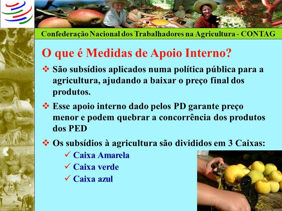 Confederação Nacional dos Trabalhadores na Agricultura - CONTAG O que é Medidas de Apoio Interno? São subsídios aplicados numa política pública para a