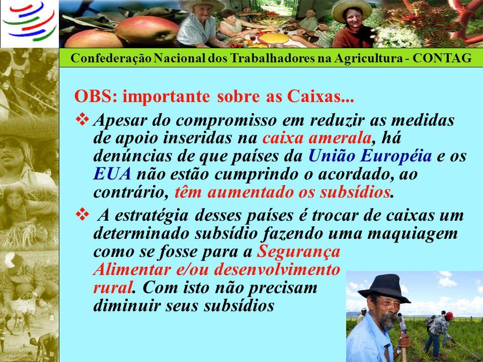 Confederação Nacional dos Trabalhadores na Agricultura - CONTAG OBS: importante sobre as Caixas... Apesar do compromisso em reduzir as medidas de apoi