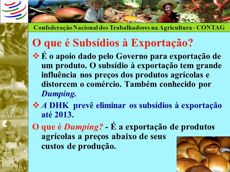 Confederação Nacional dos Trabalhadores na Agricultura - CONTAG O que é Subsídios à Exportação? É o apoio dado pelo Governo para exportação de um prod