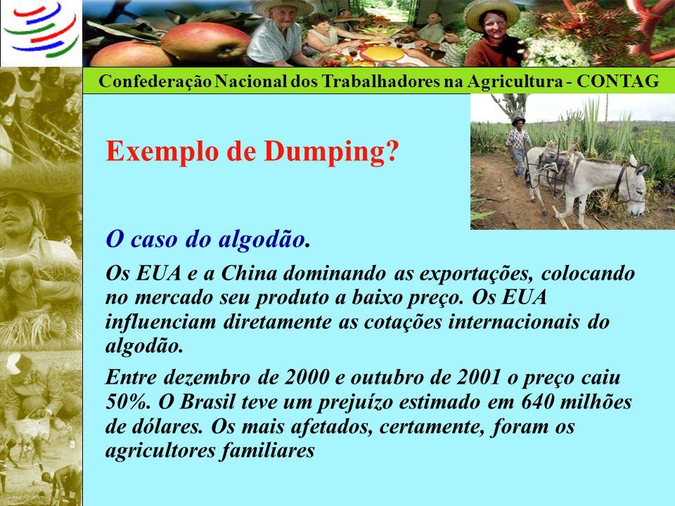 Confederação Nacional dos Trabalhadores na Agricultura - CONTAG Exemplo de Dumping? O caso do algodão. Os EUA e a China dominando as exportações, colo