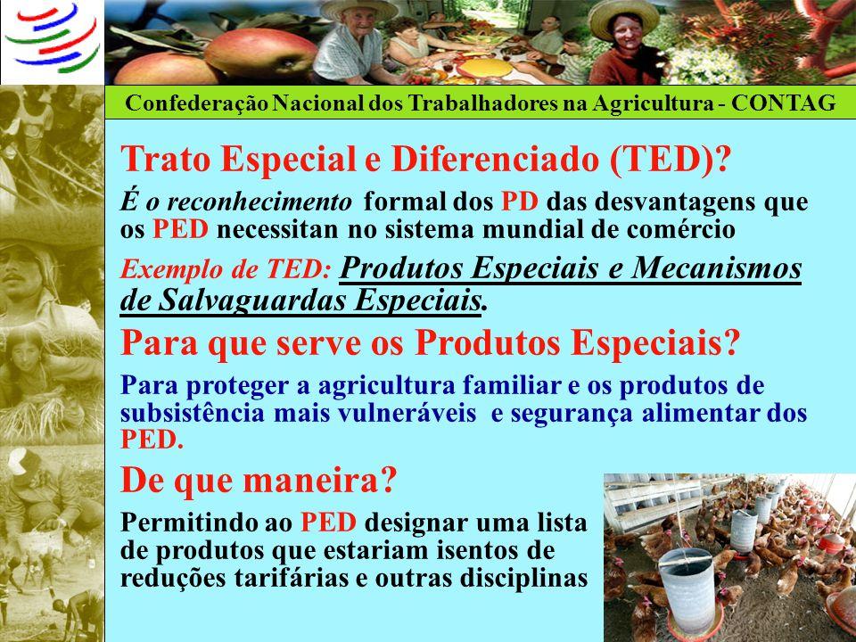 Confederação Nacional dos Trabalhadores na Agricultura - CONTAG Trato Especial e Diferenciado (TED)? É o reconhecimento formal dos PD das desvantagens