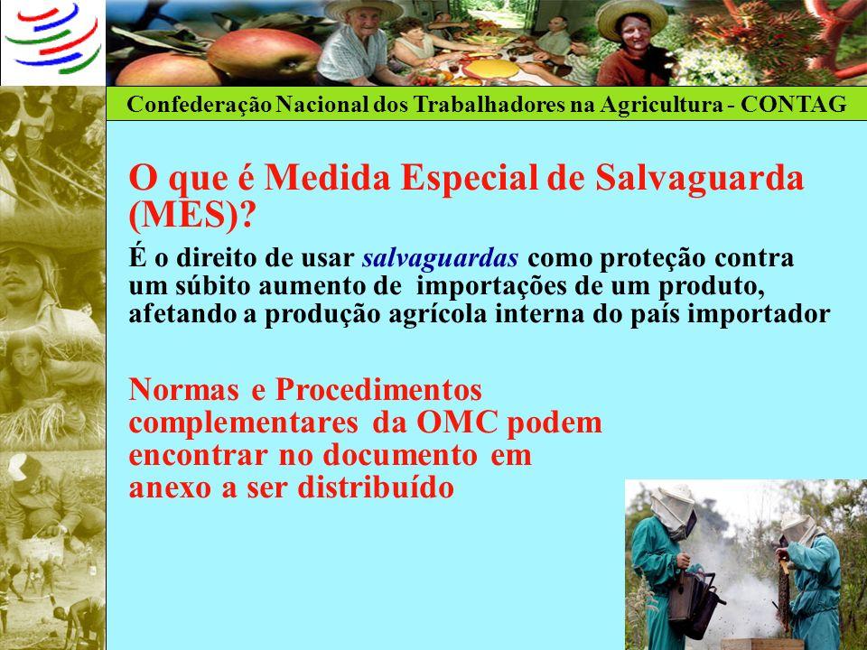 Confederação Nacional dos Trabalhadores na Agricultura - CONTAG O que é Medida Especial de Salvaguarda (MES)? É o direito de usar salvaguardas como pr