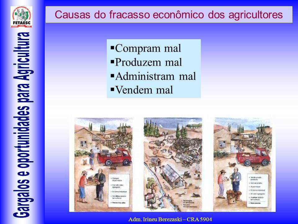 Adm. Irineu Berezaski – CRA 5904 Causas do fracasso econômico dos agricultores Compram mal Produzem mal Administram mal Vendem mal